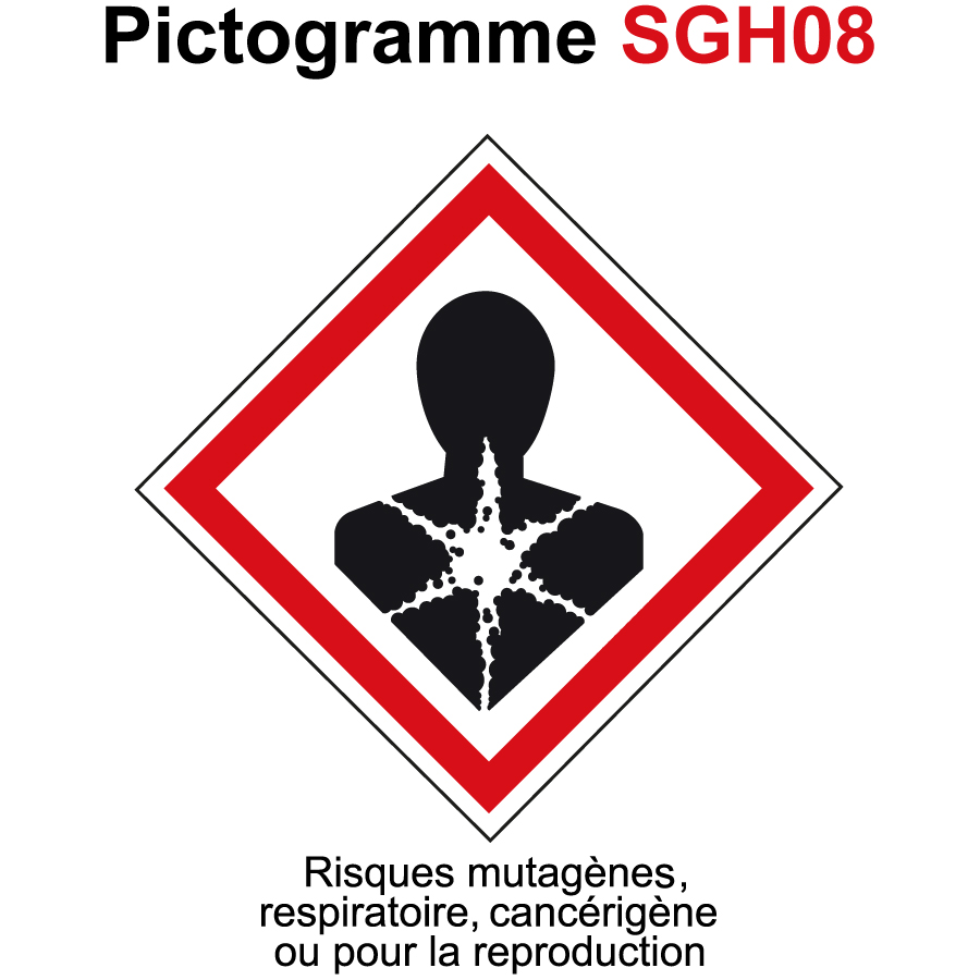 Pictogramme SGH08